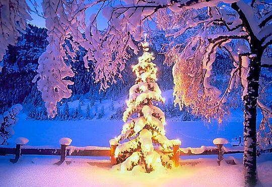 Weihnachtsbasteln und Tag der offenen Tür am 7.12.2017!
