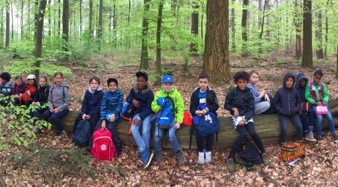 Die Klassen 3a und 3c bei den Waldspielen 2019